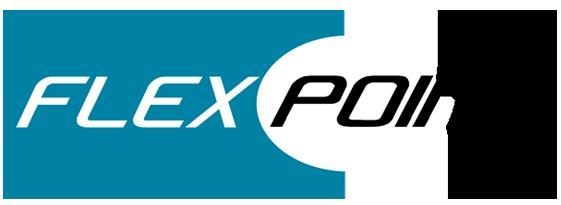 FLEX POINT SYSTEM