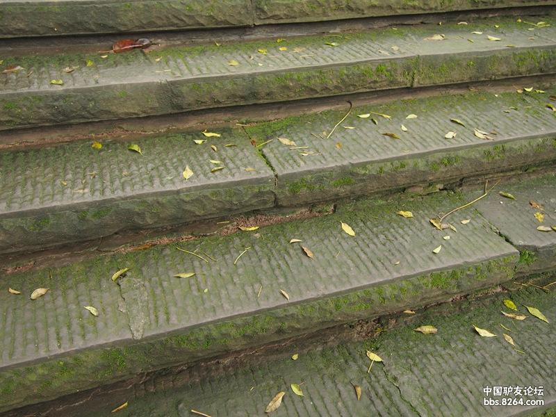 攀爬 徒步 城市 休闲都胜任的Scarpa接近鞋—— Vitamin-37