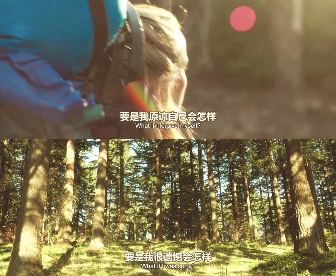 甚嚣之处,必留有荒野(一)那些优秀的户外题材电影14