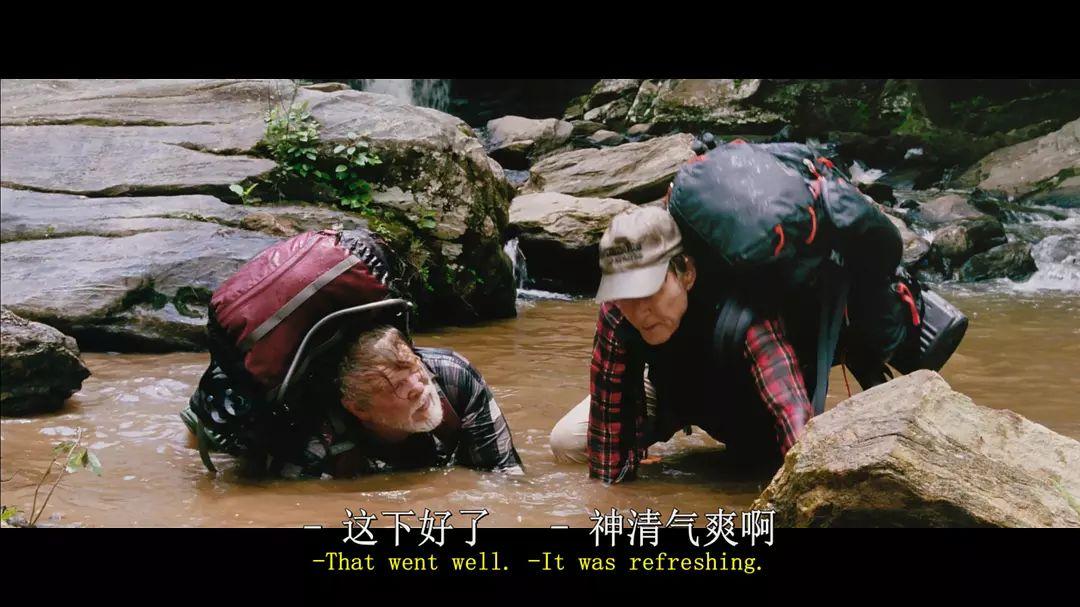 甚嚣之处,必留有荒野(三)那些优秀户外题材电影10