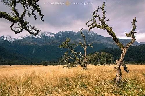 行摄新西兰 大自然的冰与火之歌12