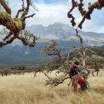 行摄新西兰 大自然的冰与火之歌19