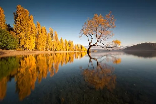 行摄新西兰 大自然的冰与火之歌7