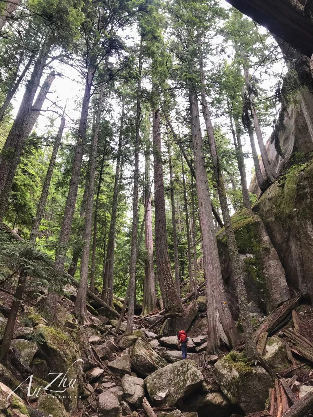 Andrew与古古的加拿大攀岩记清单消除计划-4