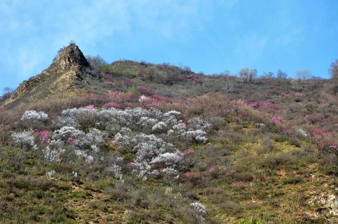 不要扎堆去武功山 这里有8条网友私藏徒步路线-2